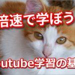 Youtube動画の再生速度を早くする方法とは?セミナー動画を効率的に見よう