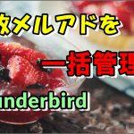 無料で便利なメール管理ソフトThunderbirdの登録方法と使い方